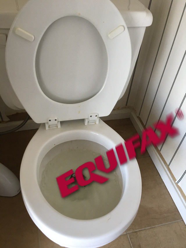 The Equifax logo being flushed in a toilet, complete with some artsy motion blur