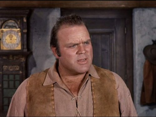 The character Hoss from the show Bonanza
